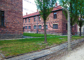 Barracks behind the gate in Auschwitz