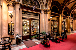 Romantic getaway in Vienna