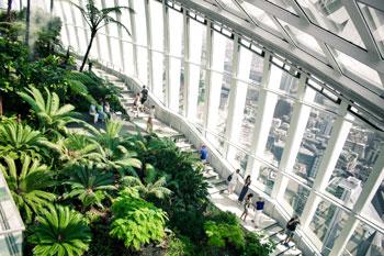 Sky Garden mirador interior  - 10 cosas gratis que hacer en Londres