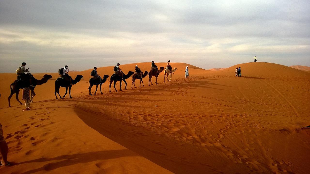 Excursión por el desierto